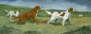 irish_red_and_white_setters_cright